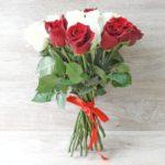 25 красно-белых роз Эквадор