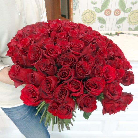 101 красная роза Эксплоуэр