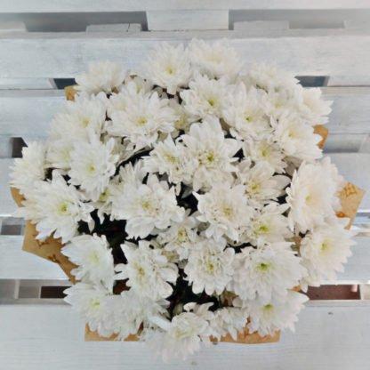 11 белых хризантем Балтика в крафт-бумаге