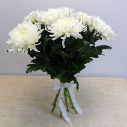 Купить хризантему Антонов в Челябинске
