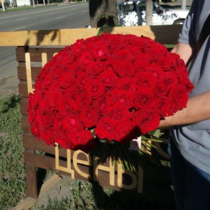 101 красная роза Россия 50 см