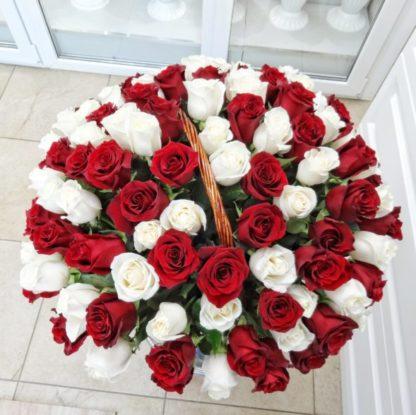 101 красно-белая роза в корзине