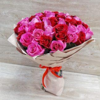 51 красно-розовая роза Эксплоуэр