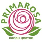 primarosa logo 3 kopija 150x150 - 11 белых хризантем Балтика в крафт-бумаге